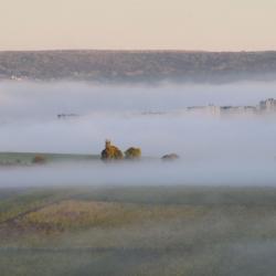 La brume s'élève (3)  D.Dumont
